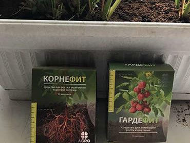 Упаковки Корнефита и Гардефита возле растений.
