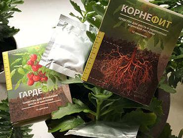 Пакетик и упаковки Корнефита и Гардефита в цветочном горшке.